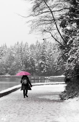 https://carrymycamera.com/2013/12/21/let-it-snow/